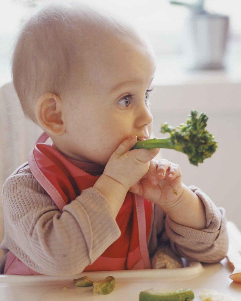 Hvad er BLW (baby-let weaning)? 3