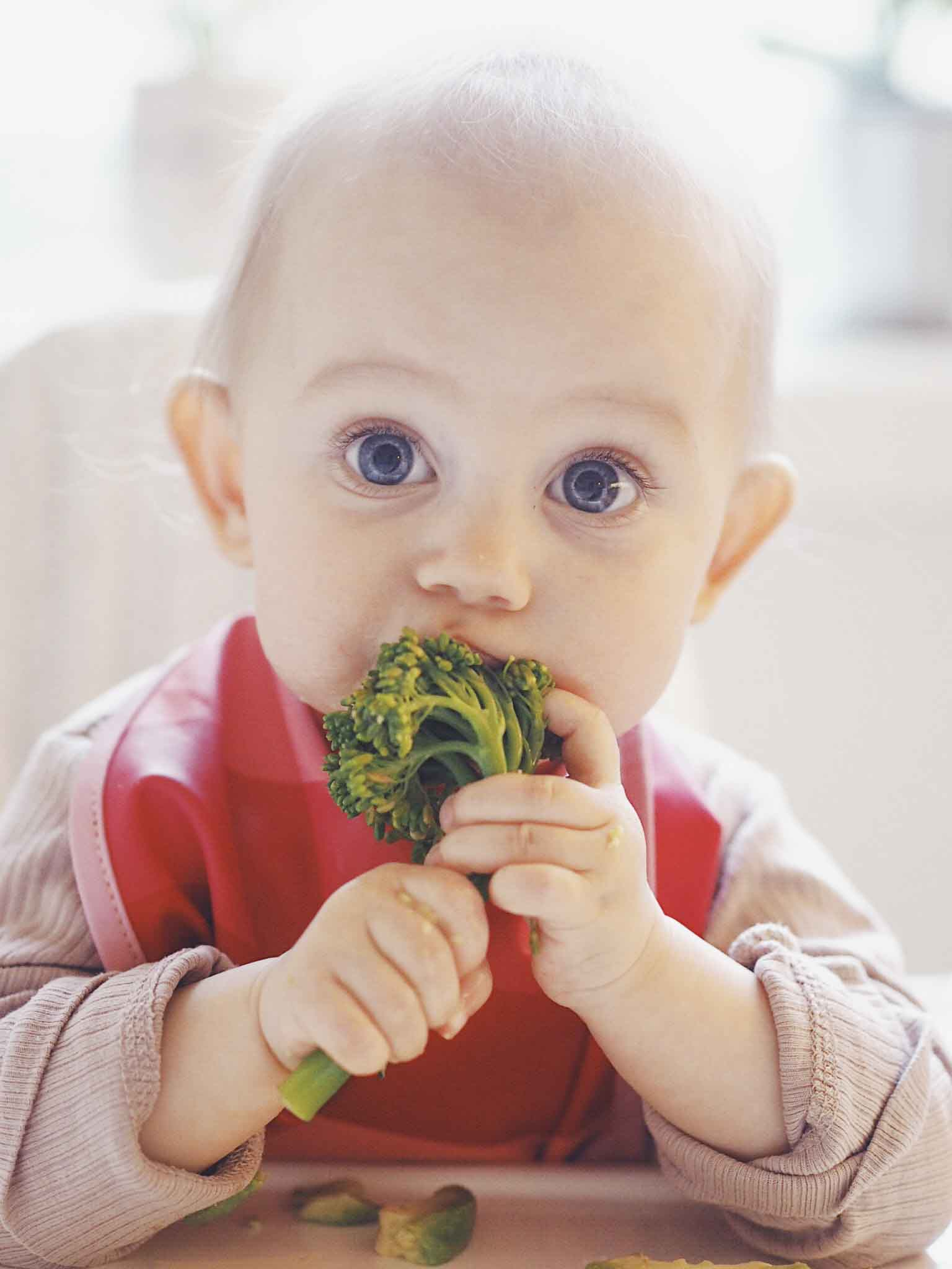 Baby-let weaning